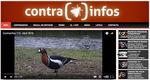 contrainfos web.jpg
