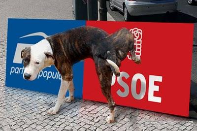 1. 1. PSOE versus PP.jpg