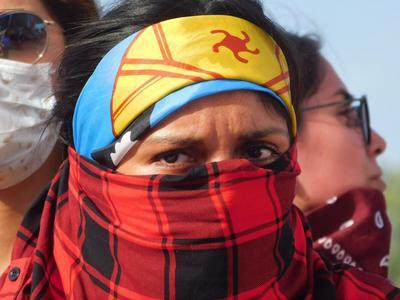 __Mapuche__Rebelion.jpg