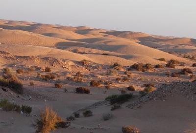 desierto sahariano.JPG
