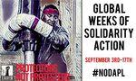 nodapl_week_of_action.jpg