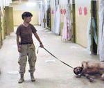 torturar es como una peste cantabria,4.jpg