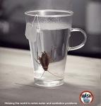 vaso-cucaracha.jpg
